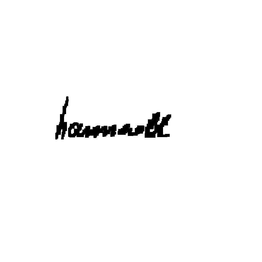 hannzoll's Signature