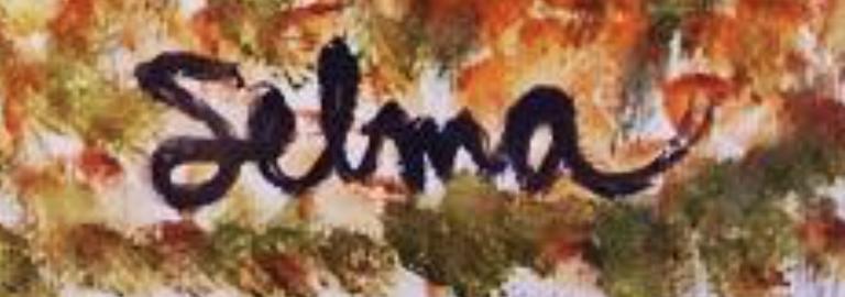 selmahammer's Signature