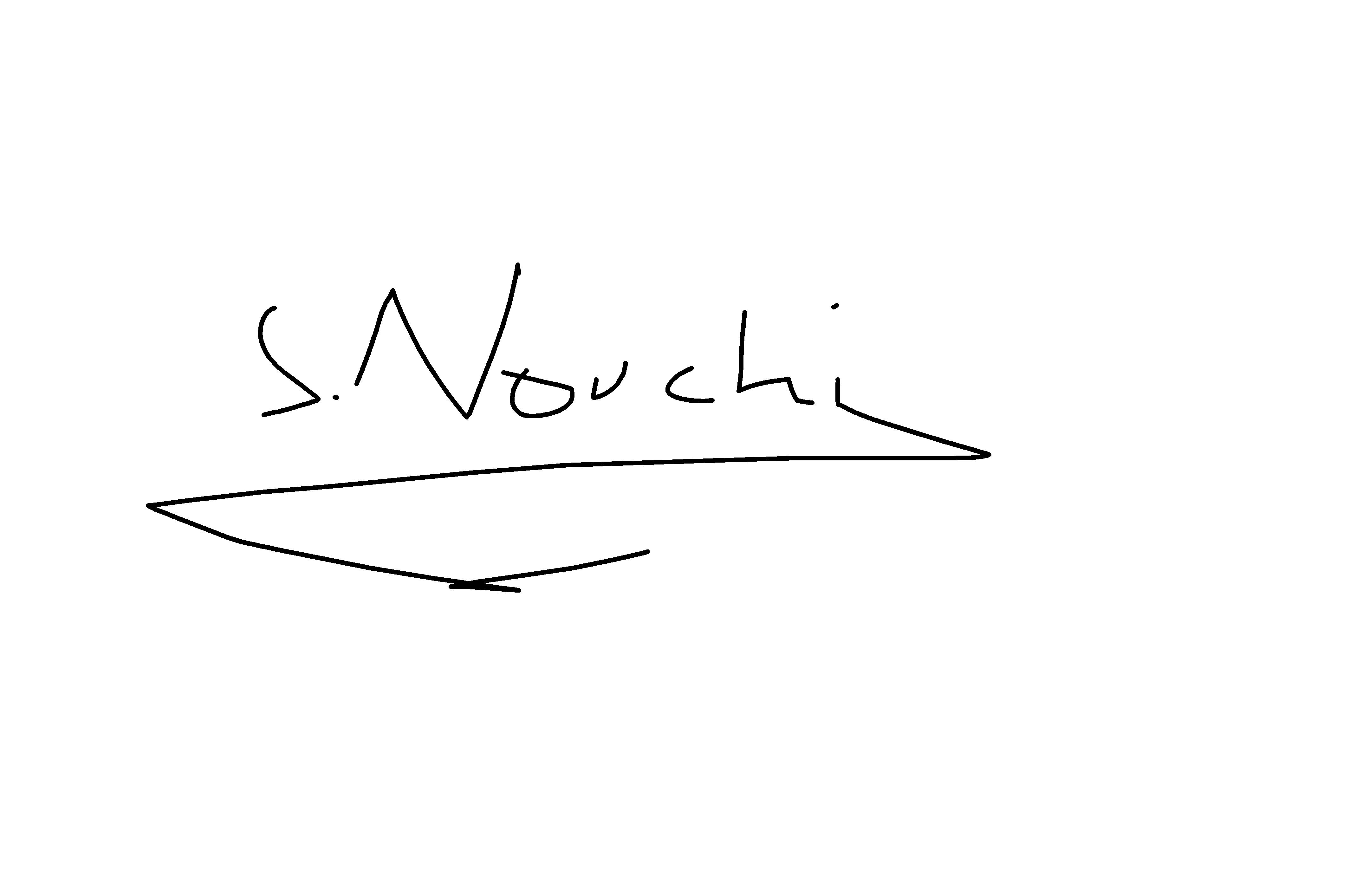 serge nouchi's Signature
