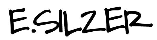 Erica SILZER's Signature
