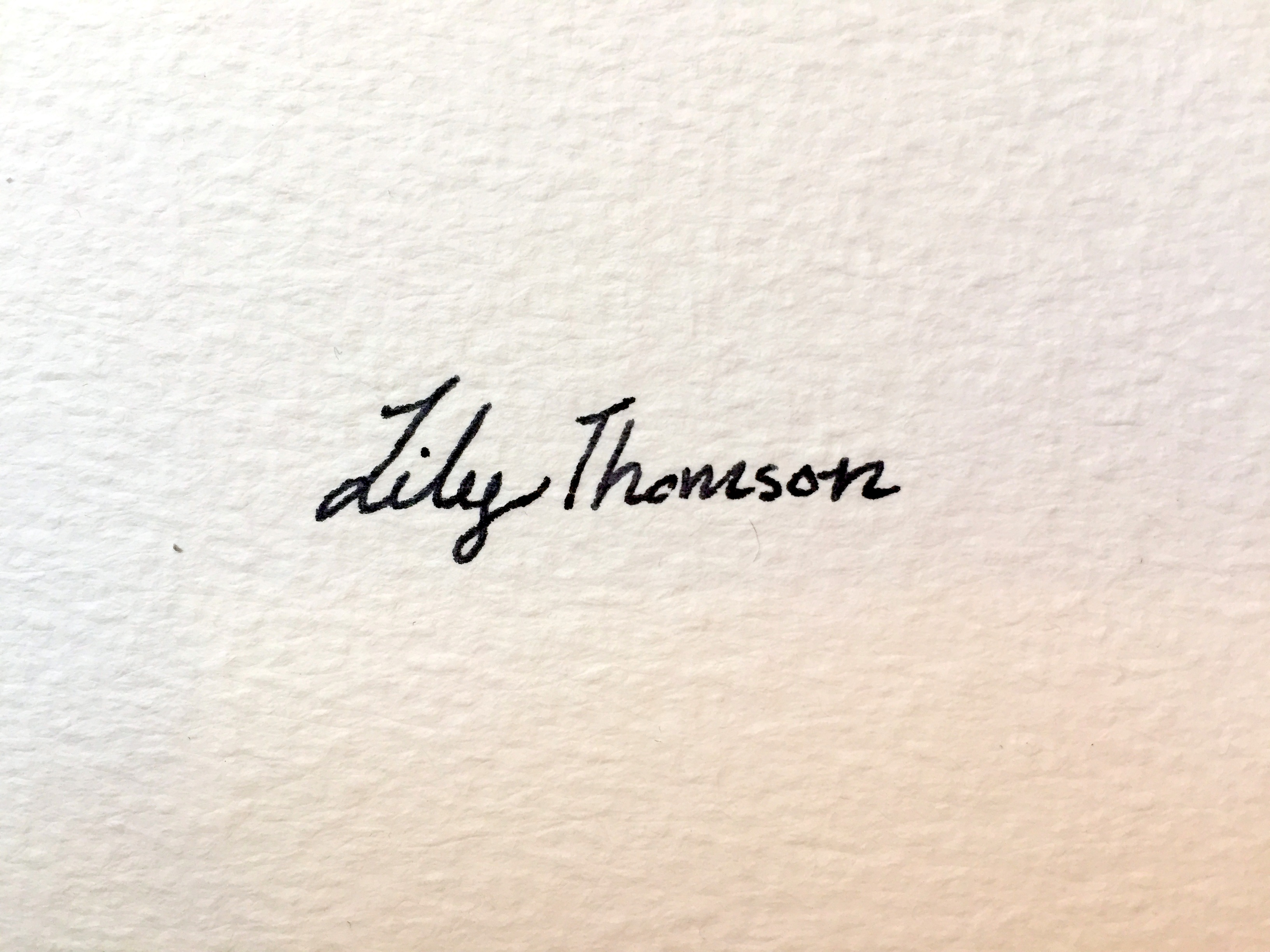 lily Thomson Designs's Signature