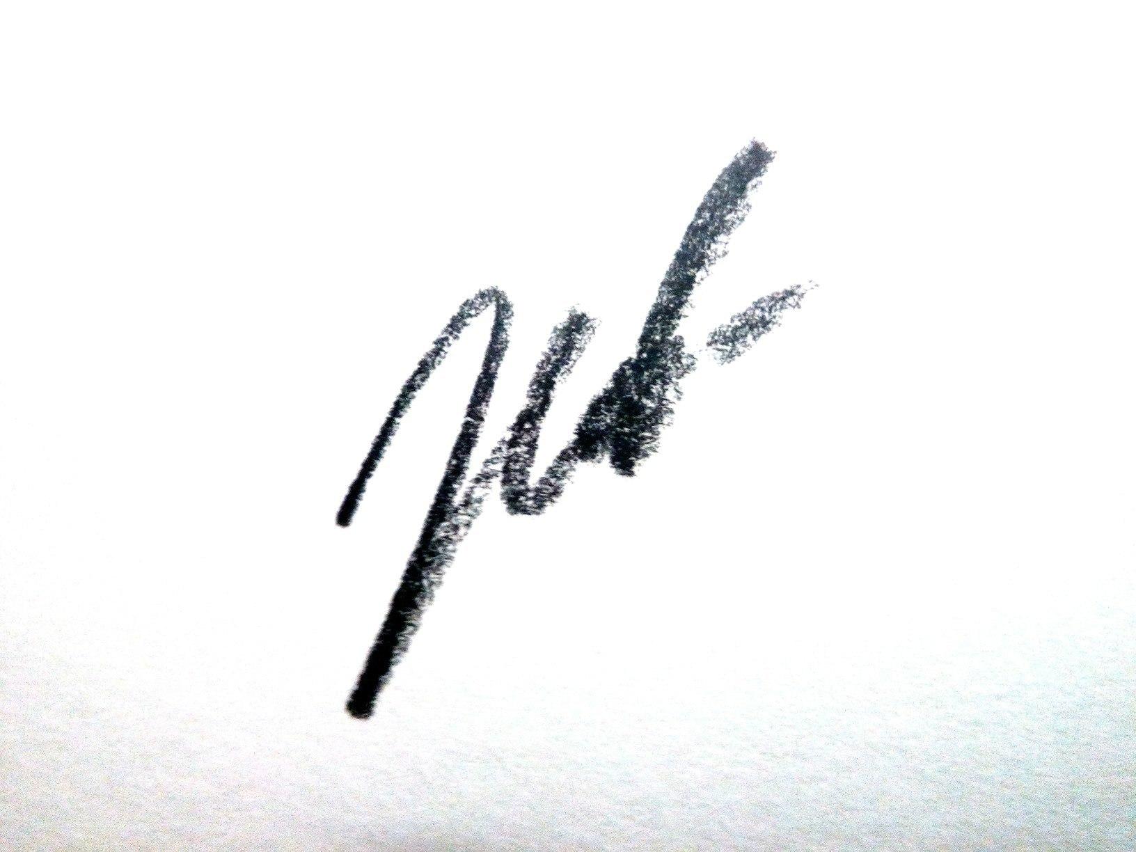 liza.zemskova's Signature