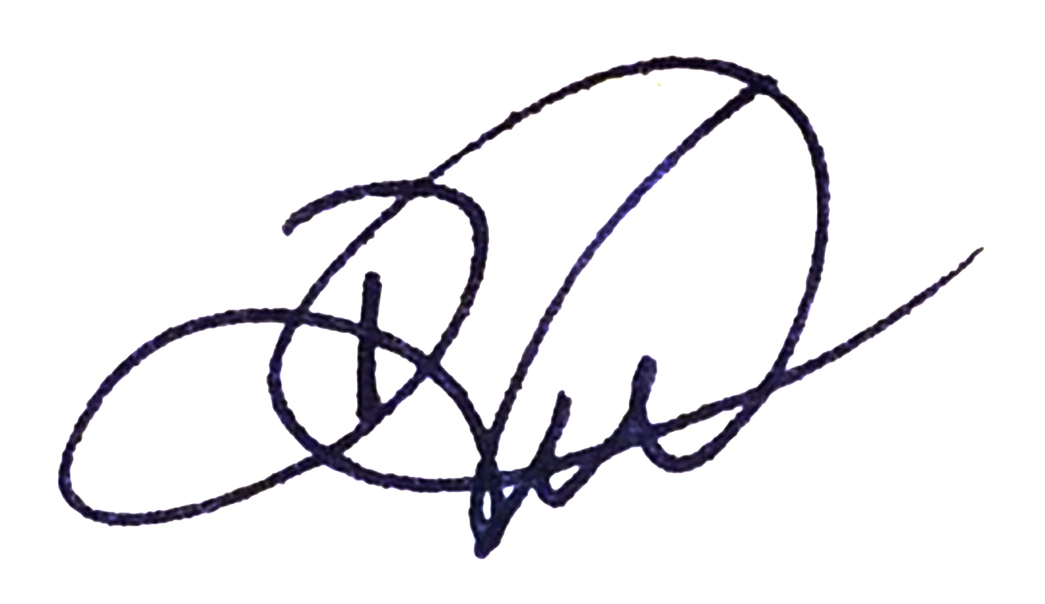d. vieth art's Signature