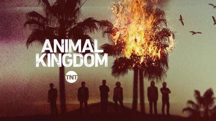 Animal Kingdom - Episode 3.09 - Libertad - Promo + Press Release