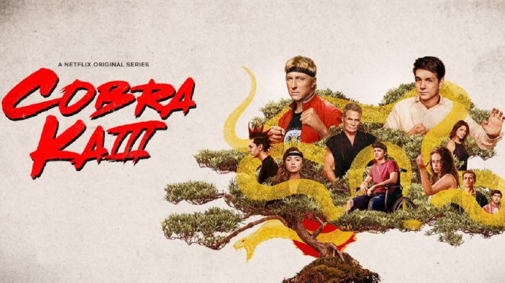 Cobra Kai - Season 1 look back - Review ' Cobra  Kai never dies '