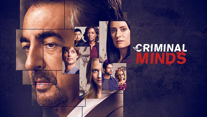 Image result for criminal minds how many seasons