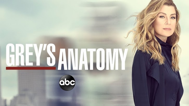 Grey's Anatomy - Renewed for a 15th Season