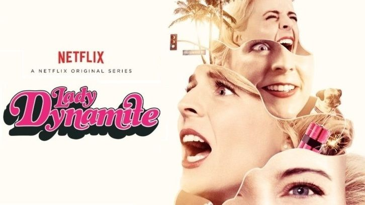 Lady Dynamite - Cancelled by Netflix