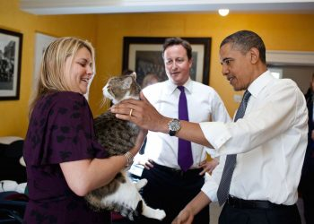 British Prime Minister David Cameron introduces President Barack Obama to Larry the cat at 10 Downing Street in London, England, May 25, 2011. (Official White House Photo by Pete Souza)This official White House photograph is being made available only for publication by news organizations and/or for personal use printing by the subject(s) of the photograph. The photograph may not be manipulated in any way and may not be used in commercial or political materials, advertisements, emails, products, promotions that in any way suggests approval or endorsement of the President, the First Family, or the White House.