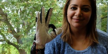 "Hadeel Ayoub wearing the smart glove which translates sign language - into speech. See National copy NNGLOVE: A savvy student has designed a 'smart glove' which translates sign language - into speech. PhD student Hadeel Ayoub designed the BrightSign to help people with speech disabilities communicate without needing an interpreter. Hadeel, who specialises in digital and software design at Goldsmiths University, has been working on the BrightSign for the past two years as part of her PhD project. She said: ""What it does is it translates sign language to text into speech in real time to allow people with speech disabilities to communicate with the general public without having to have an interpreter or someone to communicate on their behalf."