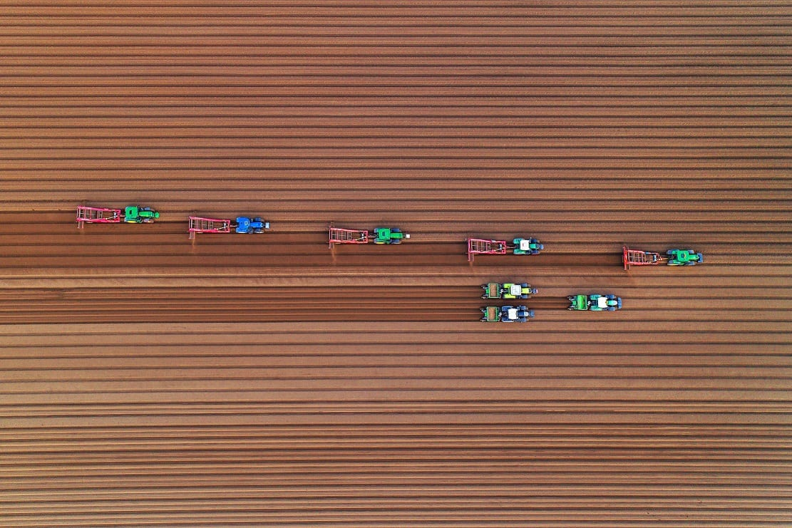 "Farmers planting potatoes in a field in East Winch, Norfolk by Chris Taylor. See Masons copy MNPOTATO: This mesmerising image looks like toy tractors playing on a fabric field - but is actually a team of farmers hard at work. Photographer Chris Taylor, 47, spotted the workers in a field in East Winch, Norfolk, on Tuesday while taking aerial snaps from the sky with his drone. As they planted potatoes, they etched perfectly straight lines in the soil which looked flawless from the air. Commenting on the eye-catching effect, Chris said: ""Looks like tiny tractors making corduroy!"""
