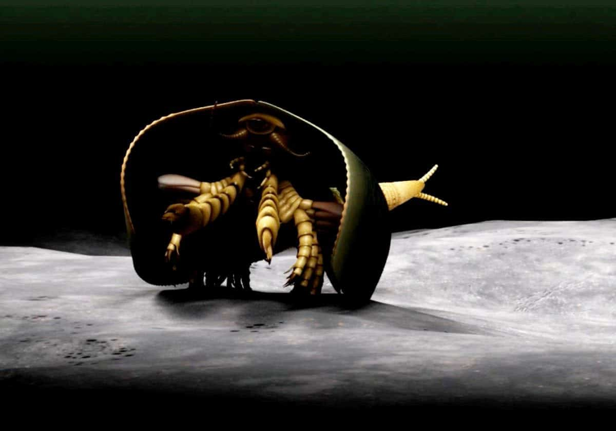 "***EMBARGOED UNTIL 6PM BST, WED APR 26TH (17:00 GMT)***A 507 million-year-old sea monster with can-opener like pincers has been identified for the first time. See NATIONAL story NNMONSTER.  And the strange-looking creature could point to the origin of modern day millipedes, crabs and insects, according to paleontologists.  Canadian scientists have uncovered the new fossil species that sheds light on the origin of mandibulates - the most abundant and diverse group of organisms on Earth, which includes flies, ants, crayfish and centipedes.  The creature, named Tokummia katalepsis by the researchers, is a new and ""exceptionally well-preserved"" fossilised arthropod - a common group of invertebrate animals with segmented limbs and hardened exoskeletons.  Tokummia documents for the first time in detail the anatomy of early ""mandibulates"", a sub-group of arthropods which possess a pair of specialised appendages known as mandibles, used to grasp, crush and cut their food.  Study lead author Cedric Aria, a recent graduate of the PhD programme at the University of Toronto, said: ""In spite of their colossal diversity today, the origin of mandibulates had largely remained a mystery."