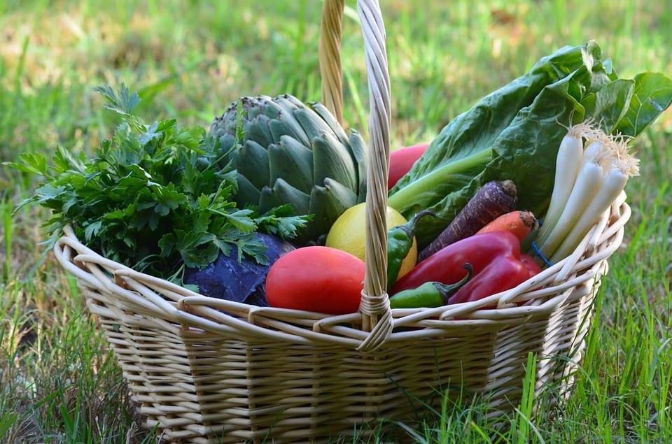 Organic Vegetarian Vegan Food Vegetable Healthy