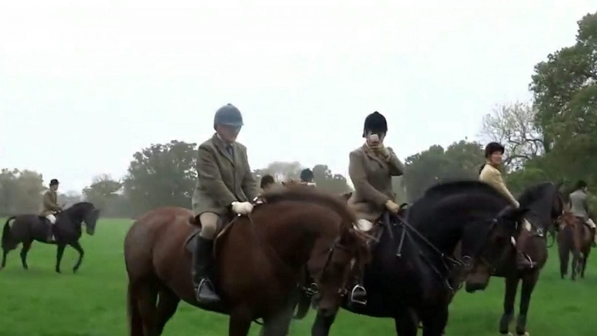 "Footage showing the hunt chasing a fox. See Ross Parry story RPYHUNT; A police investigation into a hunt has been dropped by the CPS due to a lack of evidence - despite officers being given a VIDEO of a fox being chased by hounds. The CPS was handed footage of a fox across fields in Cheshire - followed by terriermen on quads and hunt members on horses. Cheshire Monitors - a group of hunt saboteurs - captured the chase from two different locations and gave the footage to the police, who took statements and did site visits. But after six months of investigating, the CPS said the case ""didn't meet the evidential test"" so dropped the case. The protesters are calling on law makers to strengthen the ""weak and pretty useless"" Hunting Act which outlaws the hunting of foxes by hounds."