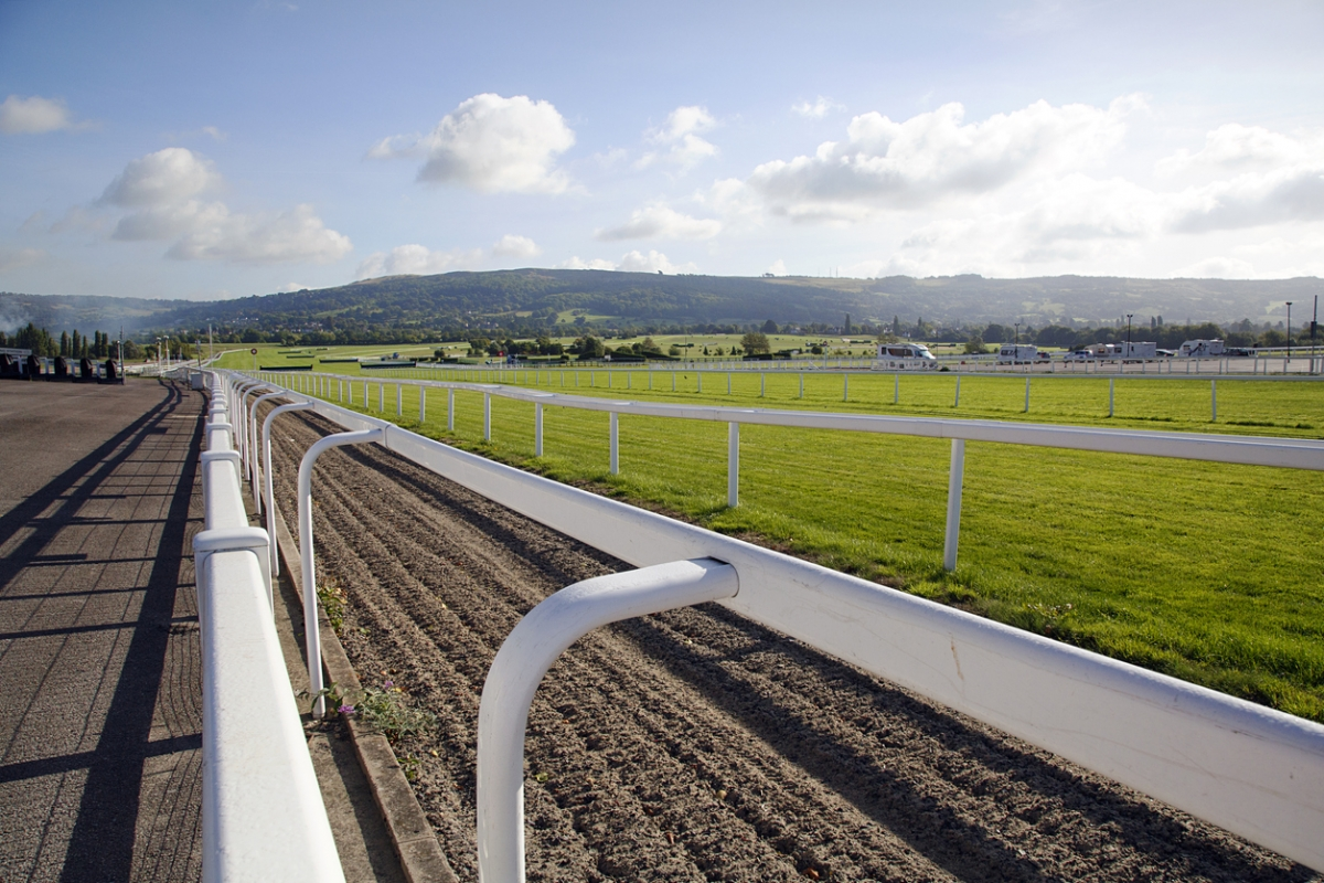 Cheltenham Racecourse in the early morning.