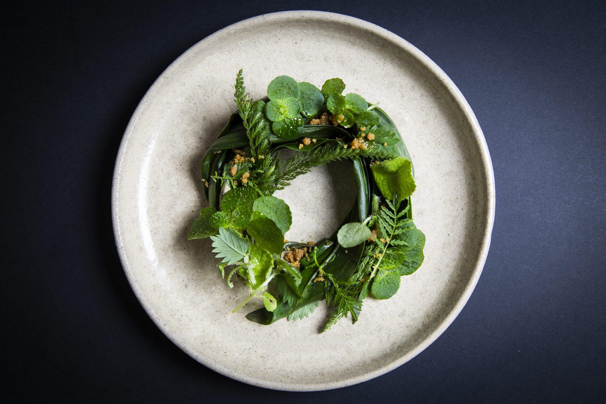 Rob Roy Cameron Crispin Herb Salad