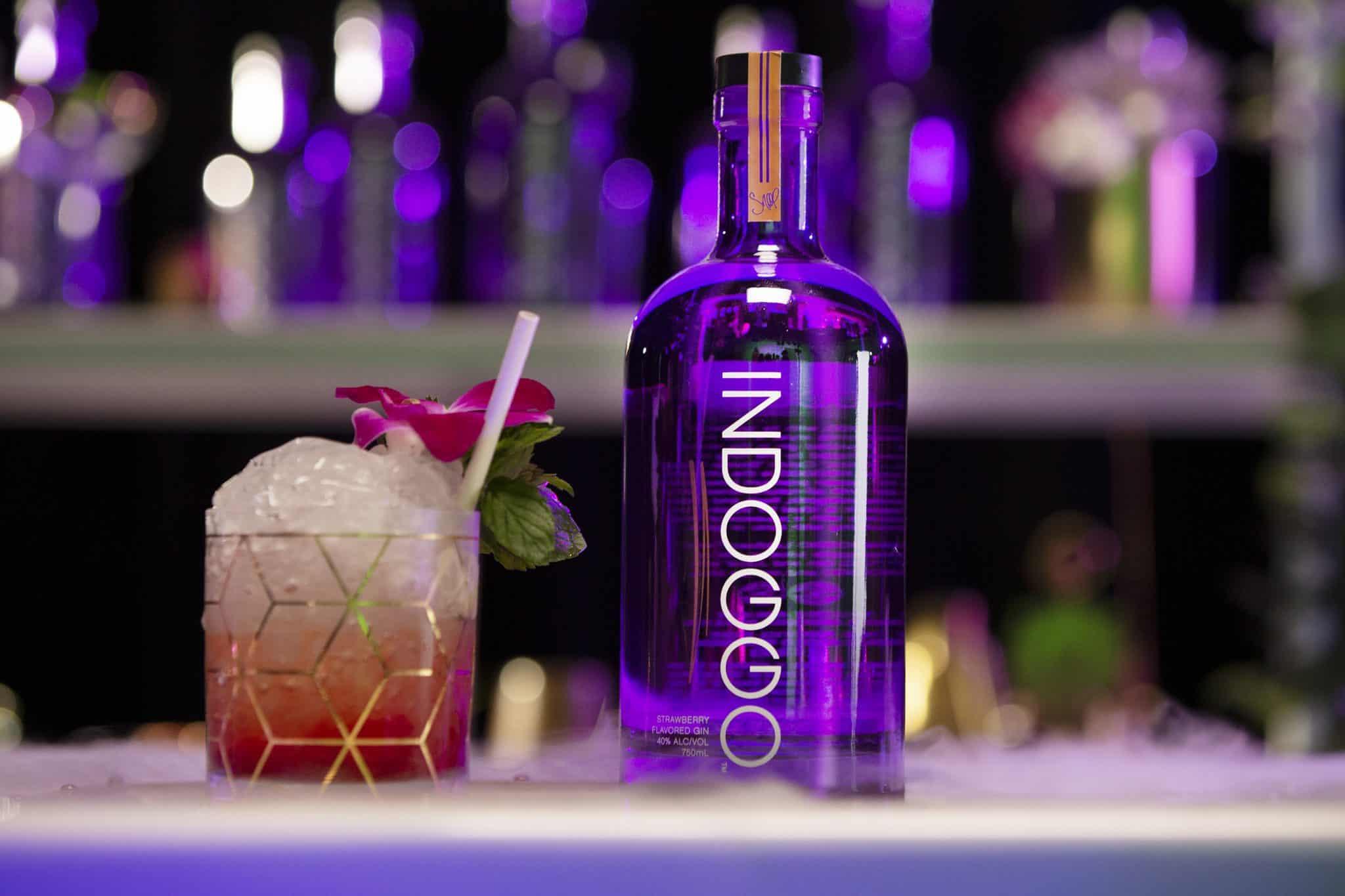 Snoop Dogg INDOGGO Gin Remix Cocktail