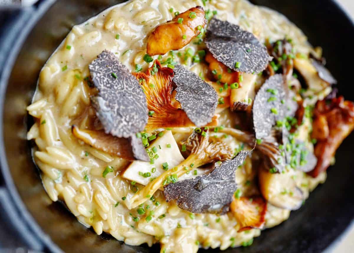 Oblix orzo recipe with wild mushroom and truffle