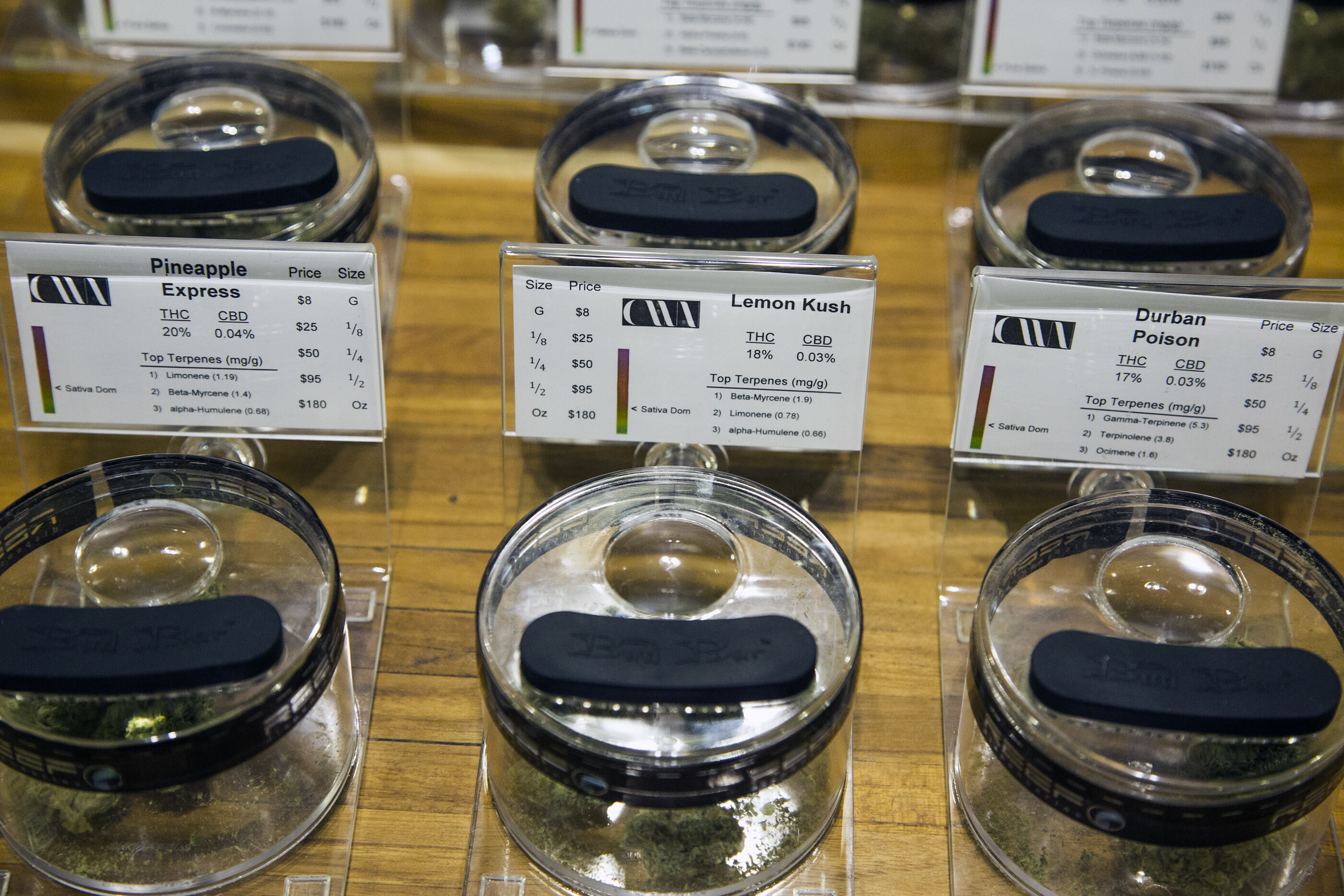 Cannabis strains on display