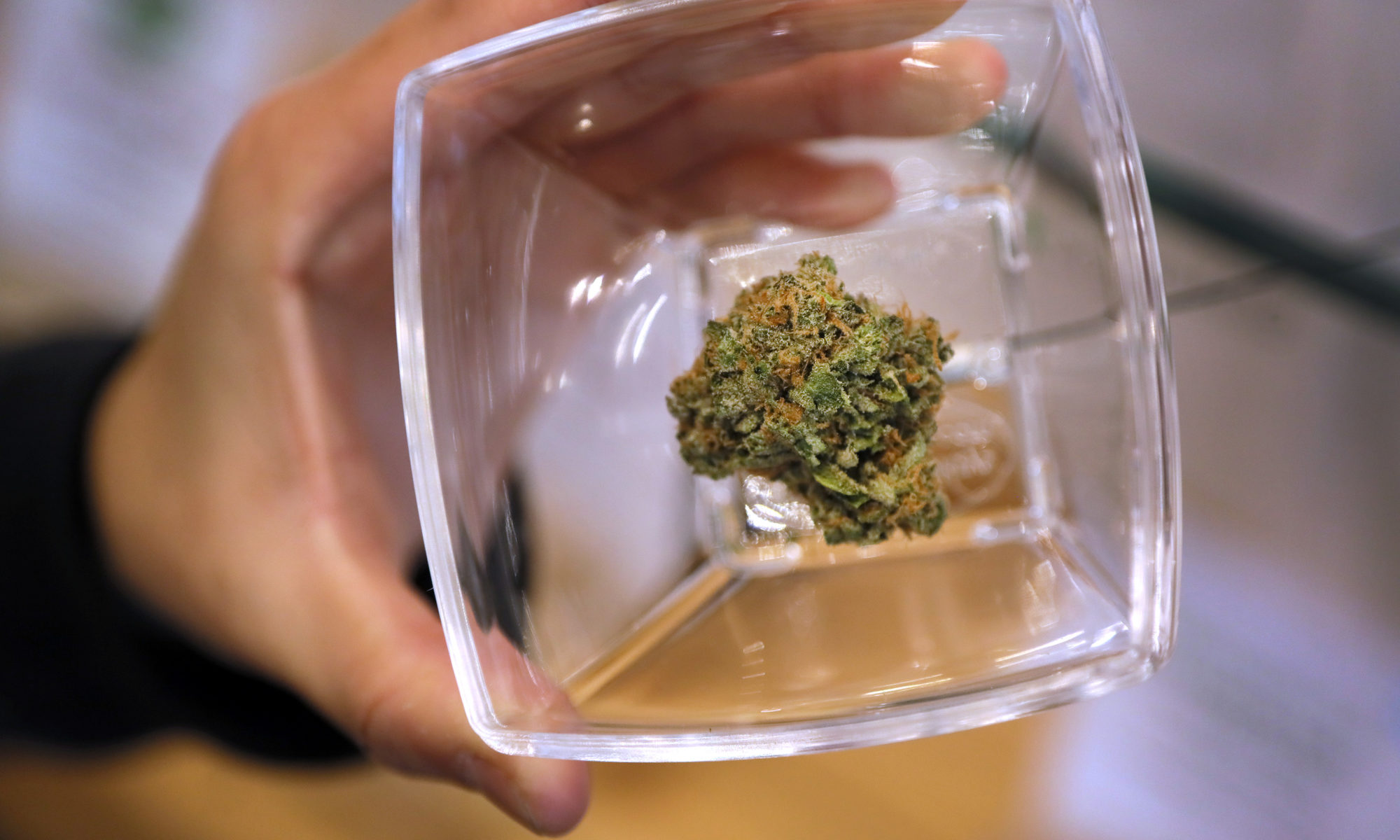 A hand holding a clear jar with marijuana in the bottom