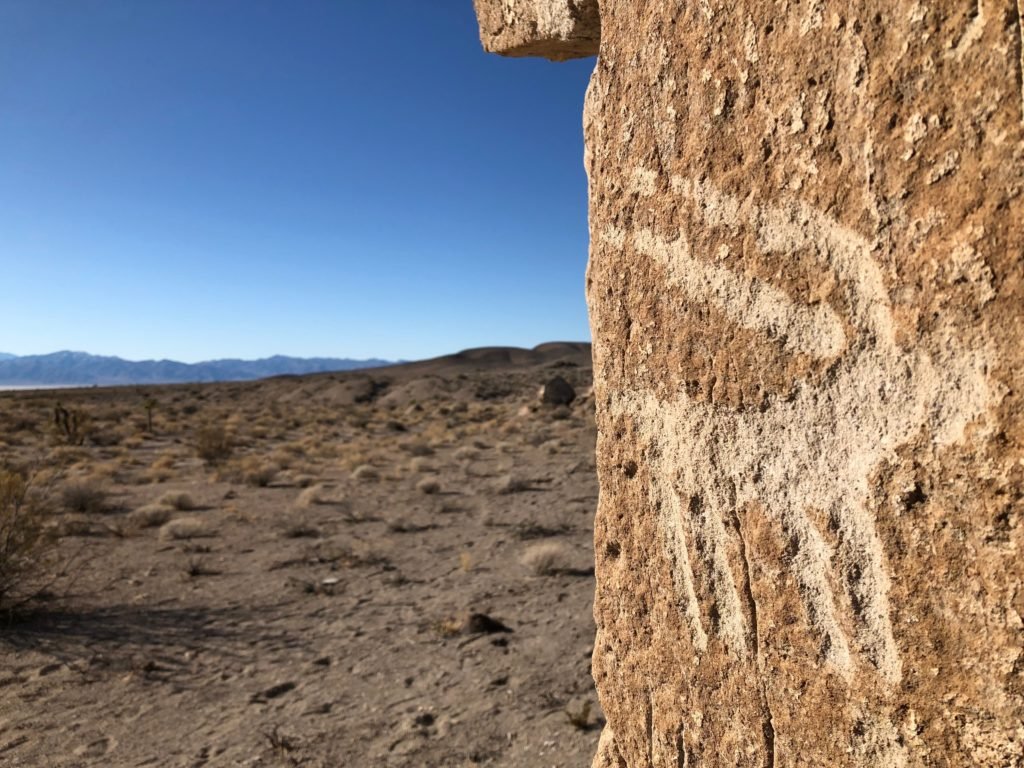 A petroglyph of a bighord sheep