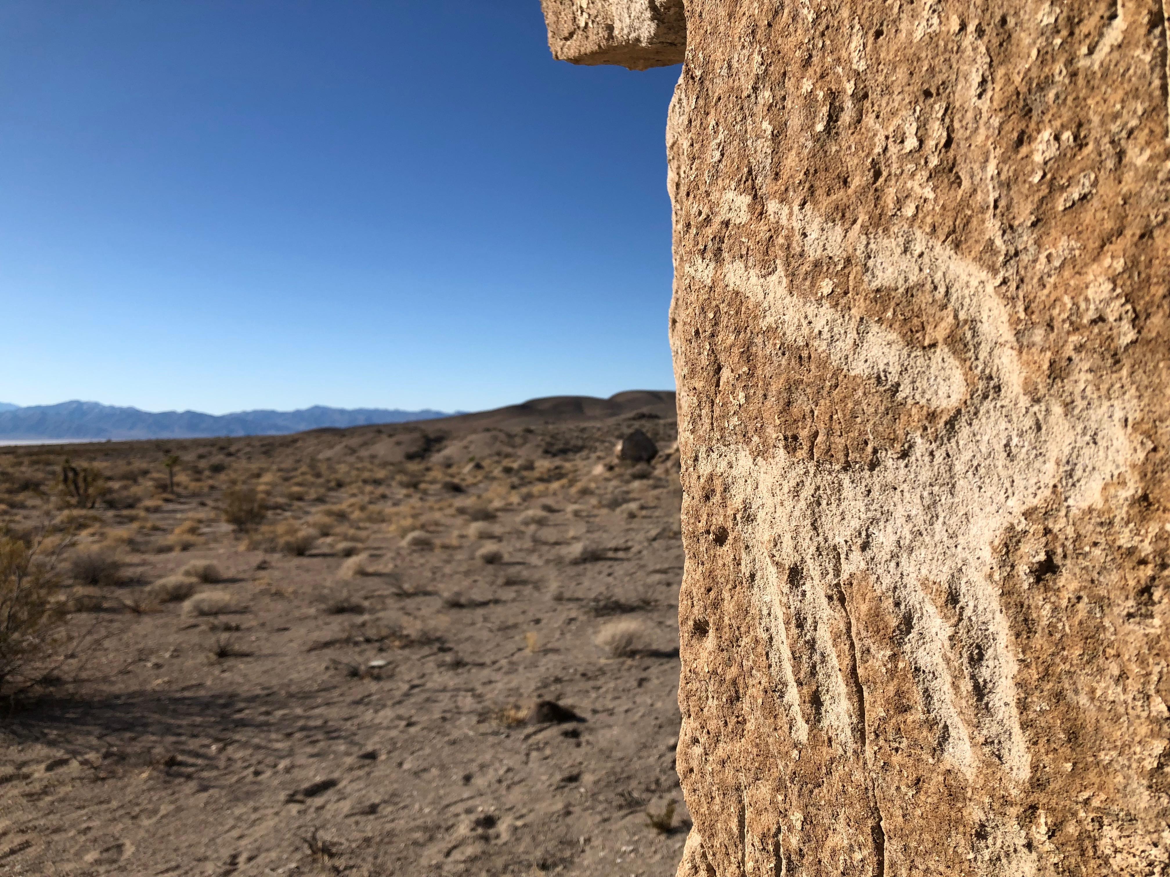 A petroglyph of a bighord sheep
