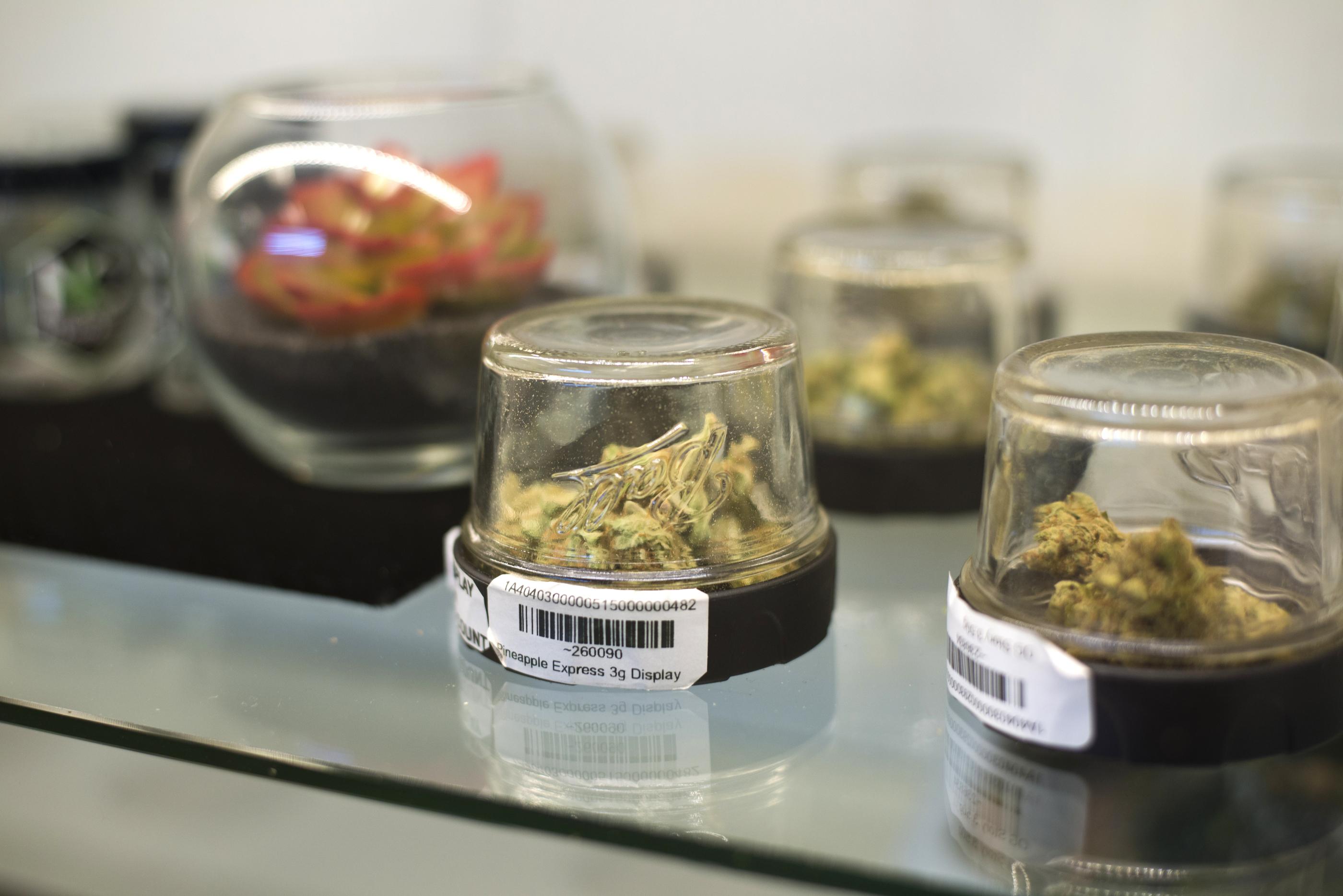 Marijuana displayed inside Inyo Fine Cannabis Dispensary