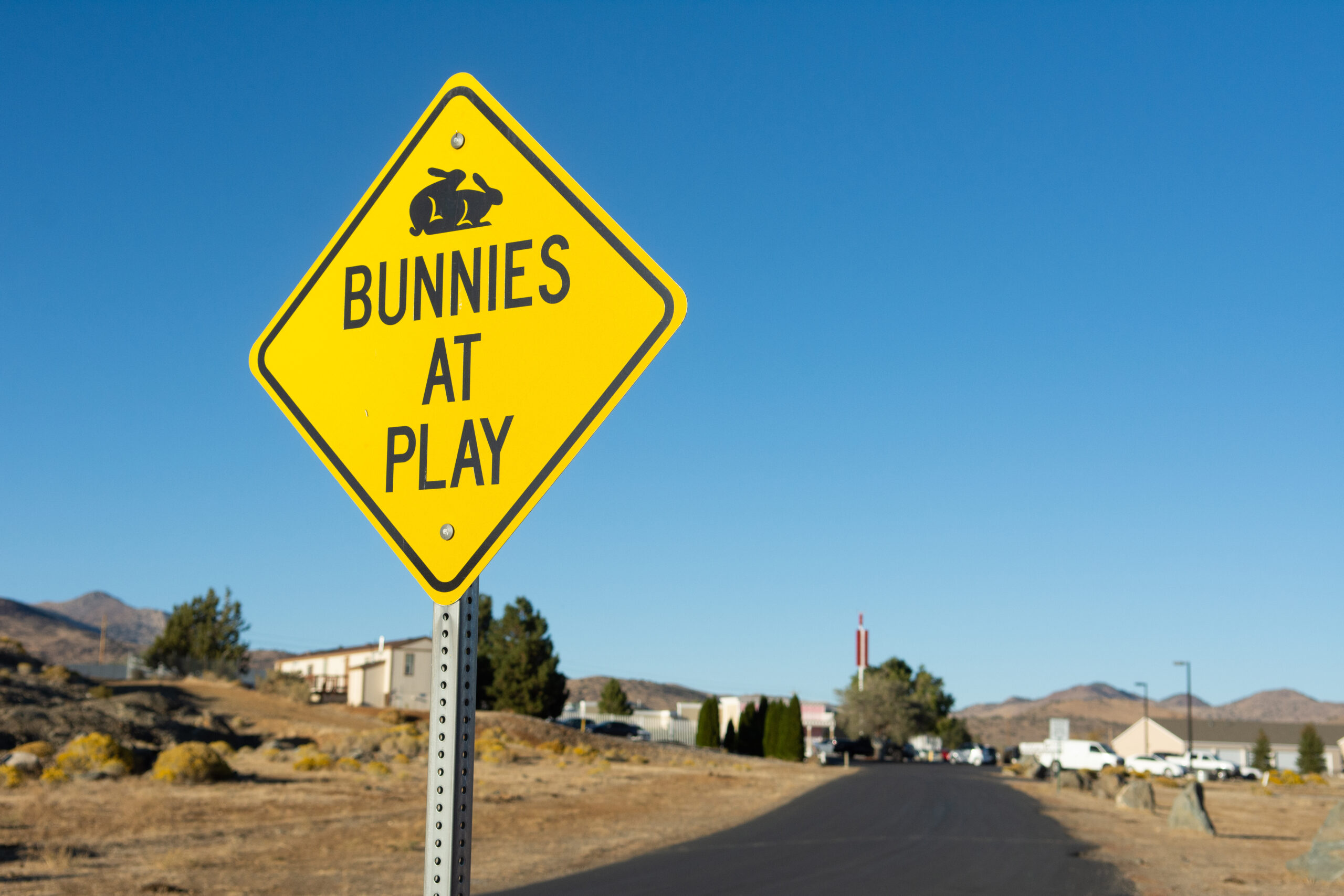 The Moonlite Bunny Ranch in Mound House, Nevada