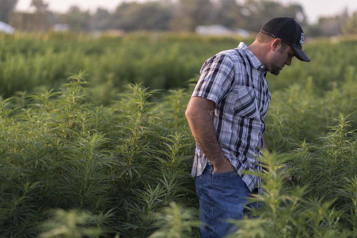 With the Farm Bill's passage, Nevada growers see new