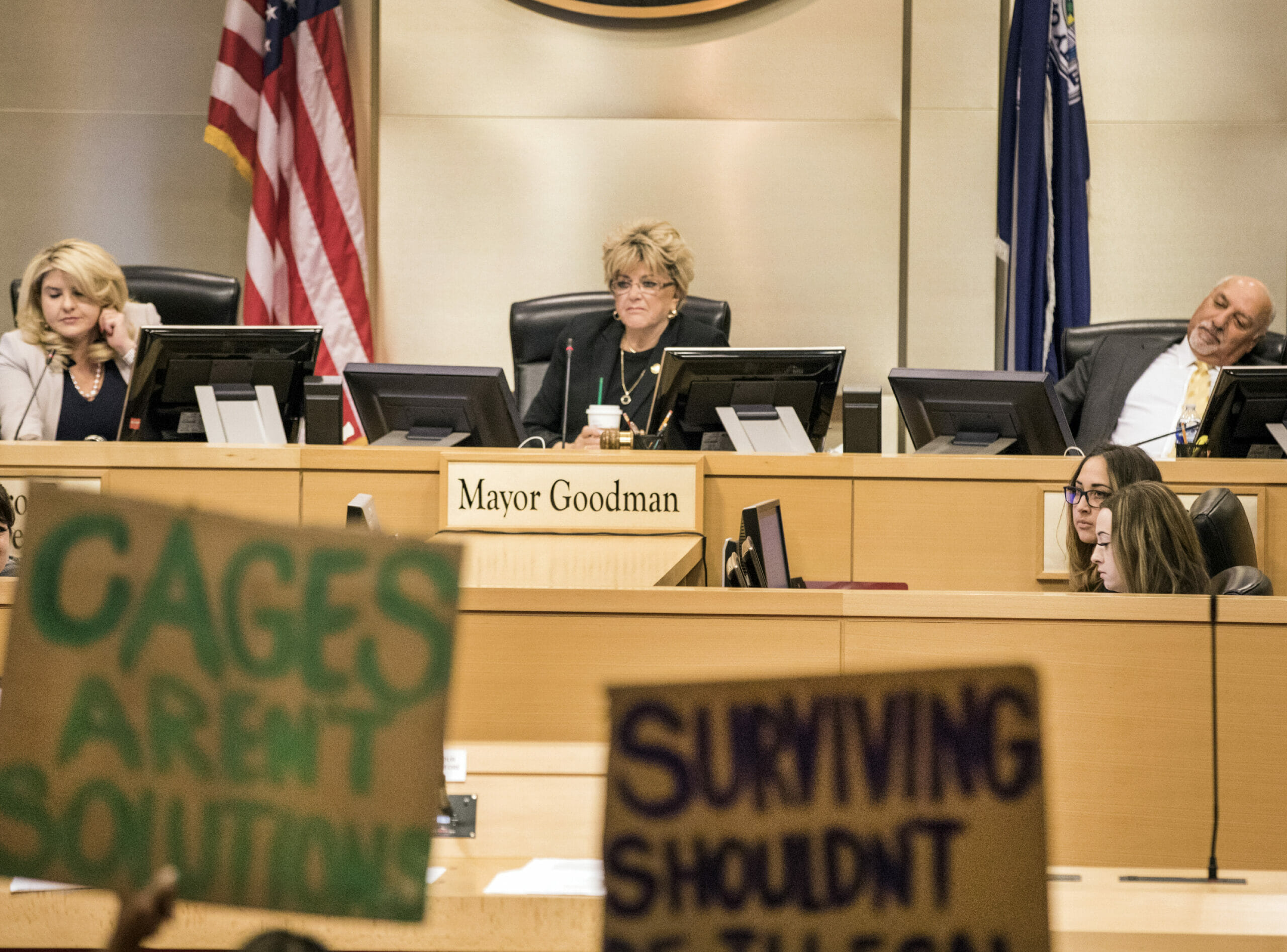Protesters with signs at city council meeting