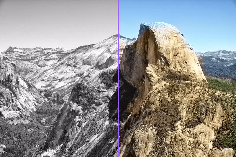 rendered-comparison