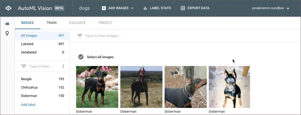 Get Started with Google Cloud AutoML Vision for Image Classification