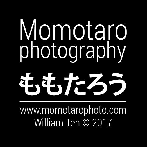 Momotarophoto
