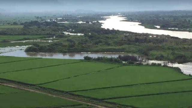 Danios Rio Jequetepeque Agricultura 0