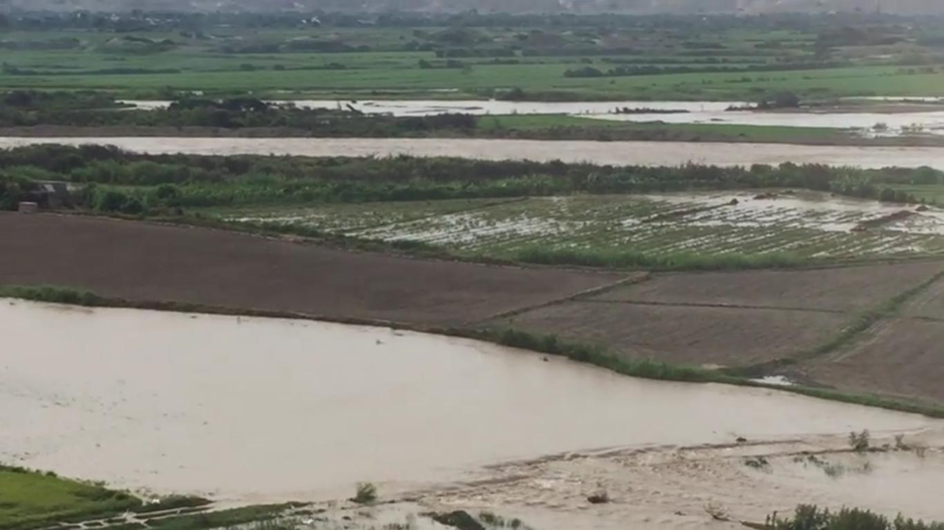 Danios Rio Jequetepeque Agricultura 3