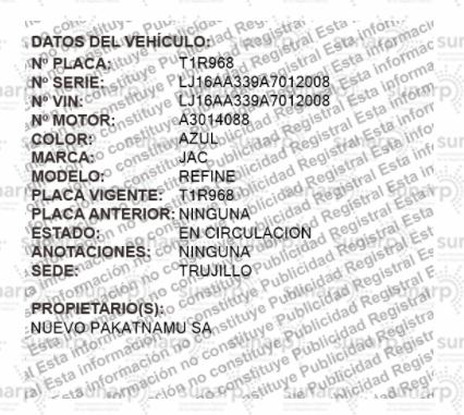 Minivan Placa