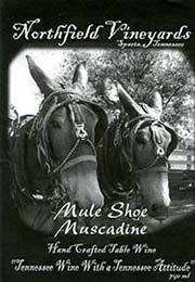 Product Image for 2015 Mule Shoe Muscadine