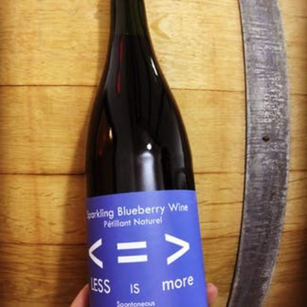 2019 Less is More Pet Nat Blueberry Wine