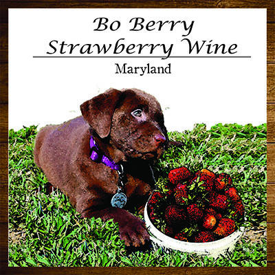 Product Image for 2017 Bo Berry Strawberry Wine
