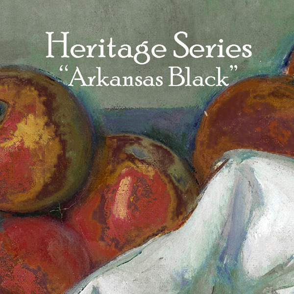 Product Image for 2019 Arkansas Black Heritage Series