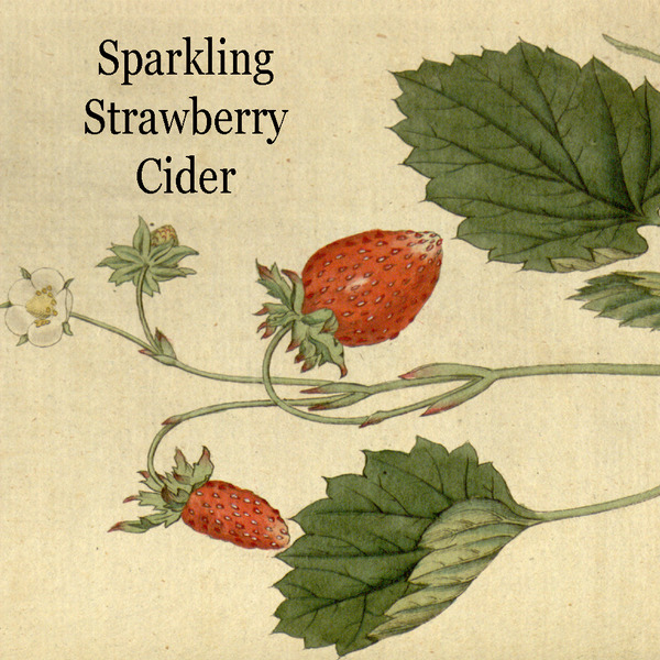Product Image for 2019 Sparkling Strawberry Cider