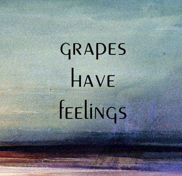 Product Image for 2019 Grapes Have Feelings