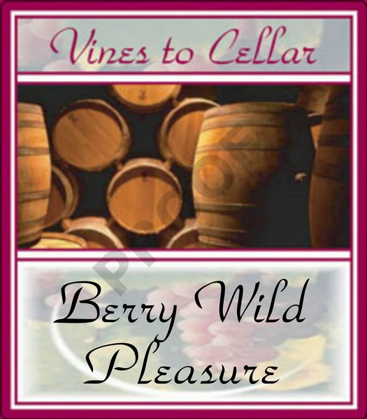 2019 Berry Wild Pleasures (Wild Berry Shiraz)