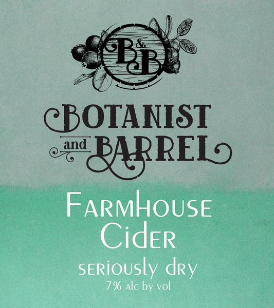 Product Image for 2019 Farmhouse Cider Seriously Dry 4-pak cans