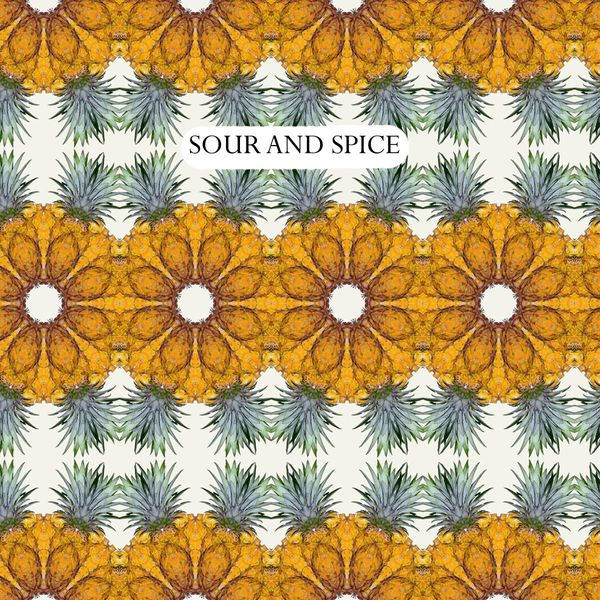 2019 Sour and Spice Cider 4/pk