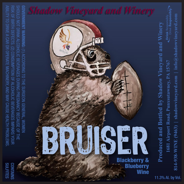 Product Image for 2017 Bruiser