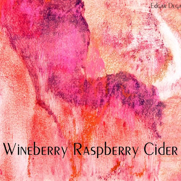 Product Image for 2019 Wineberry Raspberry Cider 375ml