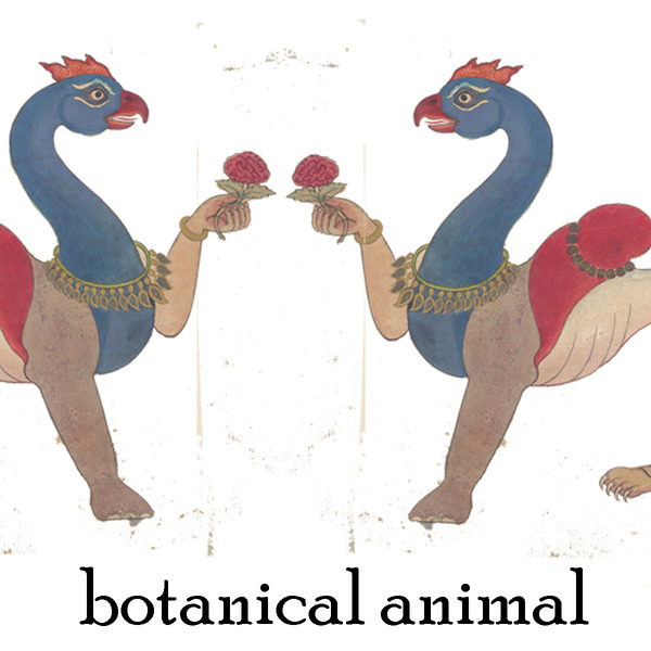 Product Image for 2019 Botanical Animal