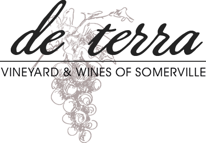 Brand image for de terra Vineyard & Winery of Somerville