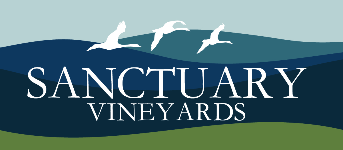 Logo for Sanctuary Vineyards